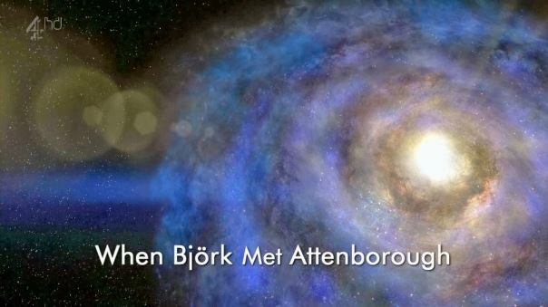Ch4.When.Bjork.Met.Attenborough.720p.HDTV.x264.AAC.MVGroup.org.mkv_001499920