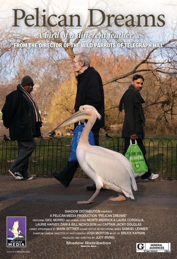 Pelican-Dreams-Poster-Final_sm-page-0011